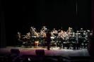 Koncert Karnawałowy-9